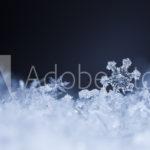 AdobeStock 132097139 Preview