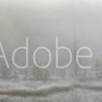 AdobeStock 137474140 Preview