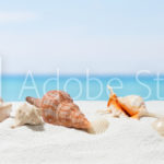 AdobeStock 148073973 Preview