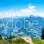 AdobeStock 180632476 Preview