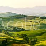 AdobeStock 94199826 Preview