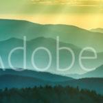 AdobeStock 98776529 Preview