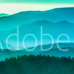 AdobeStock 98776594 Preview