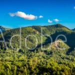 AdobeStock 99701394 Preview